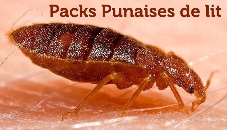 Pack Punaises de lit