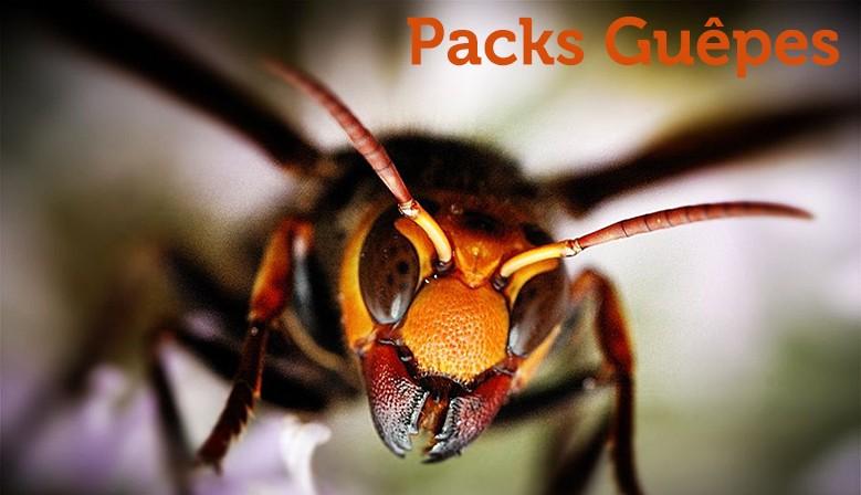 Packs Guêpes & Frelons